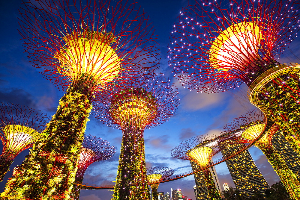 Gardens by the Bay, Singapore, Southeast Asia, Asia - 728-6344
