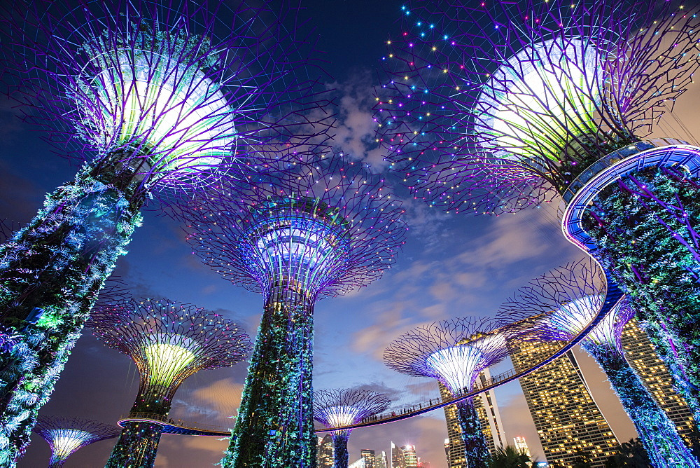 Gardens by the Bay, Singapore, Southeast Asia, Asia - 728-6345