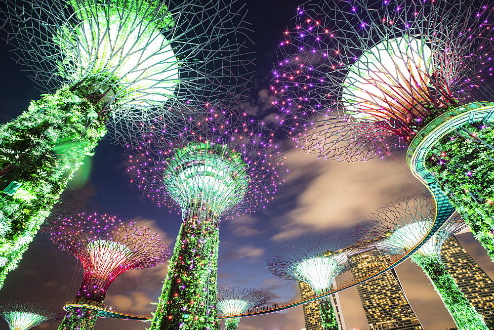 Gardens by the Bay, Singapore, Southeast Asia, Asia - 728-6346