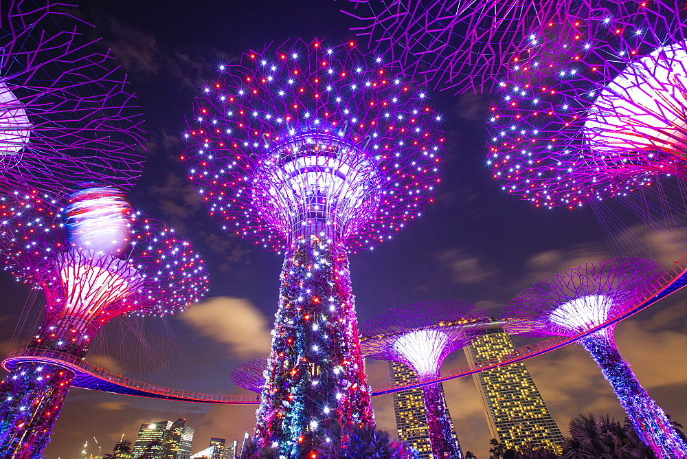 Gardens by the Bay, Singapore, Southeast Asia, Asia - 728-6347