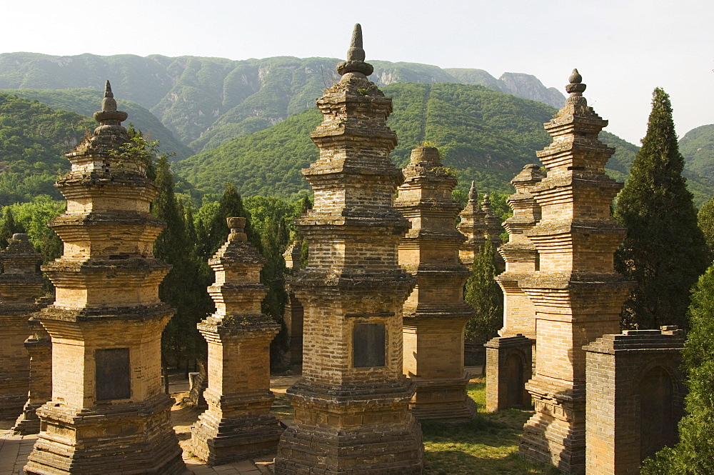 Pagoda Forest cemetery at Shaolin Temple, the birthplace of Kung Fu martial arts, Shaolin, Henan Province, China, Asia