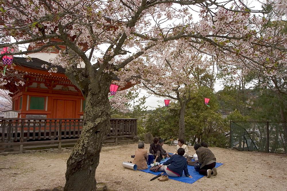 Pagoda at Itsukushima jinja shrine, spring cherry blossoms, Miyajima island, Hiroshima prefecture, Honshu island, Japan, Asia