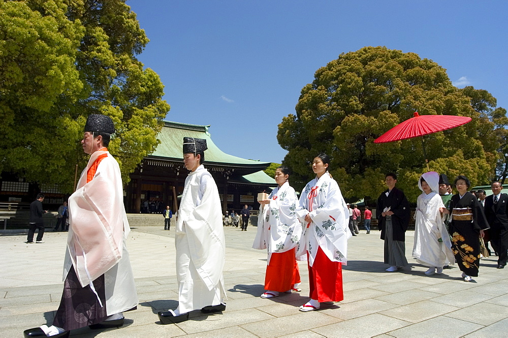 Traditional wedding ceremony, Meiji Jingu shrine, Tokyo City, Honshu Island, Japan, Asia
