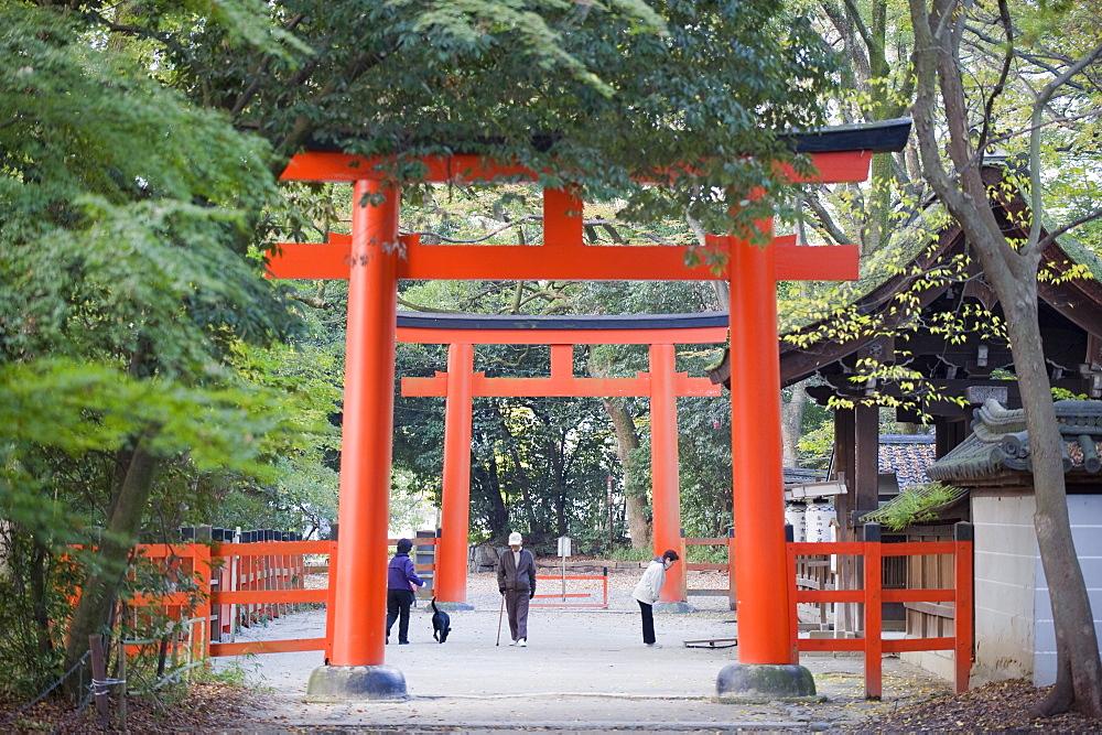 Two torii gates, Shimogamo Shrine, Tadasu no Mori, Kyoto, Japan, Asia