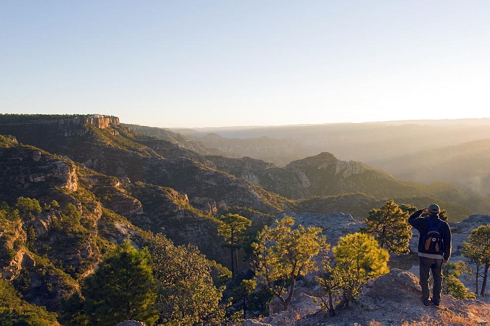 Hiker viewing sunrise in Barranca del Cobre (Copper Canyon), Chihuahua state, Mexico, North America