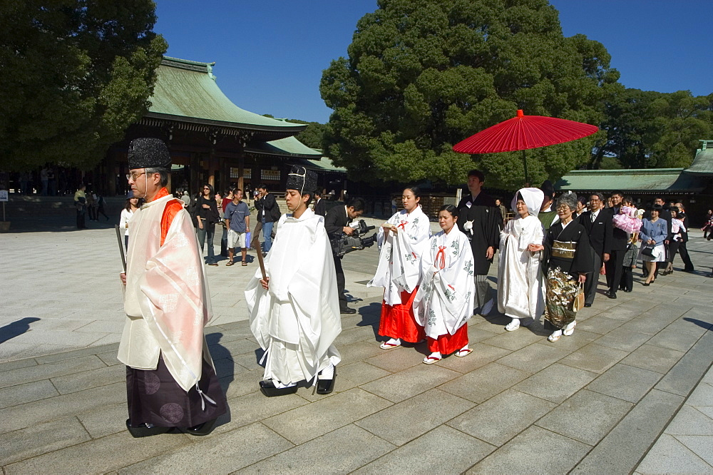 Wedding ceremony, procession, Meiji Shrine, Harajuku, Tokyo, Honshu, Japan, Asia