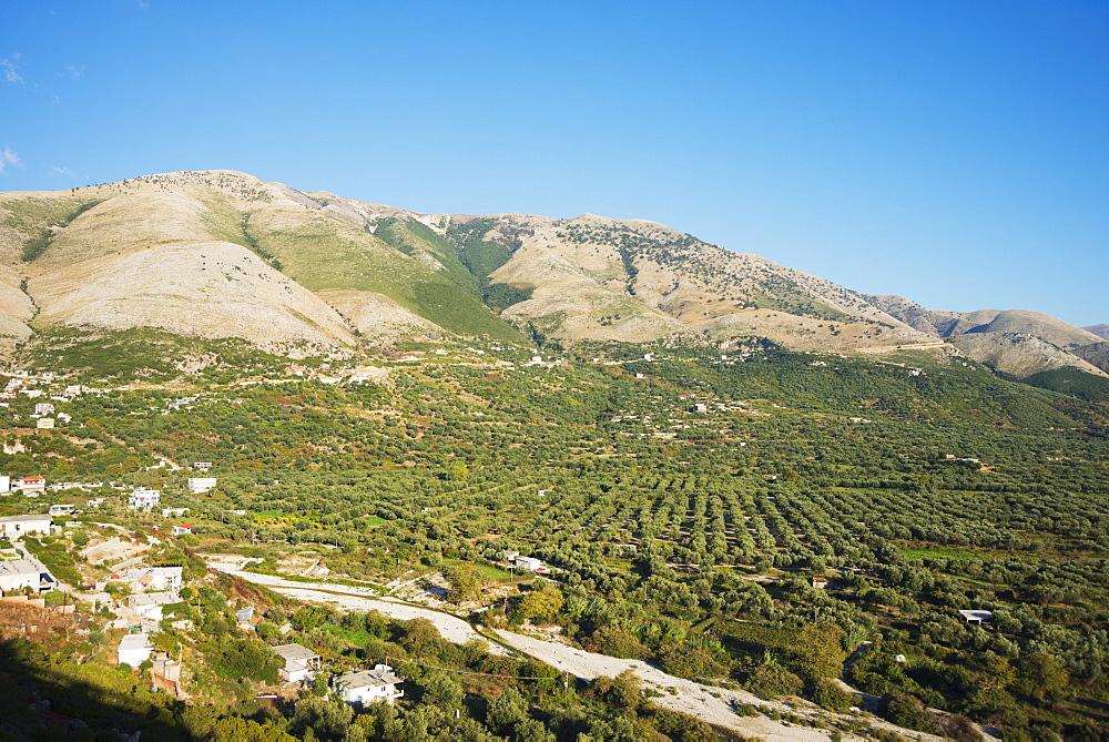 Qeparo plantations, Albania, Europe