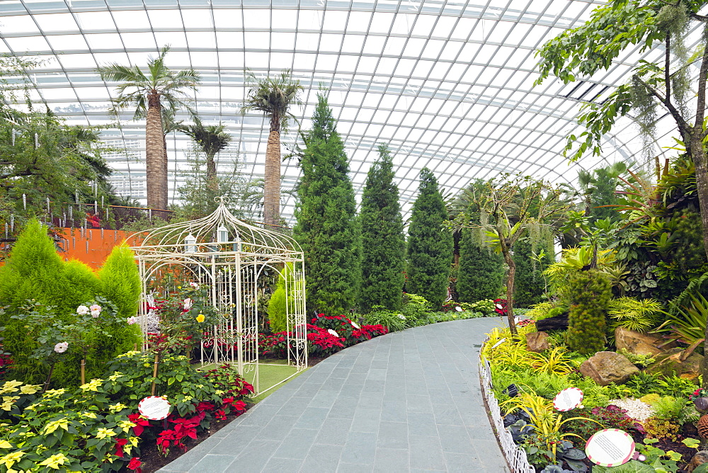 Gardens by the Bay, Flower Garden, botanic gardens, Singapore, Southeast Asia, Asia