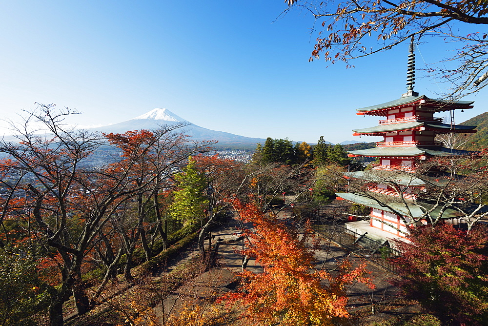 Mount Fuji 3776m and Arakura Sengen Jinja Shinto shrine, UNESCO World Heritage Site, Honshu, Japan, Asia