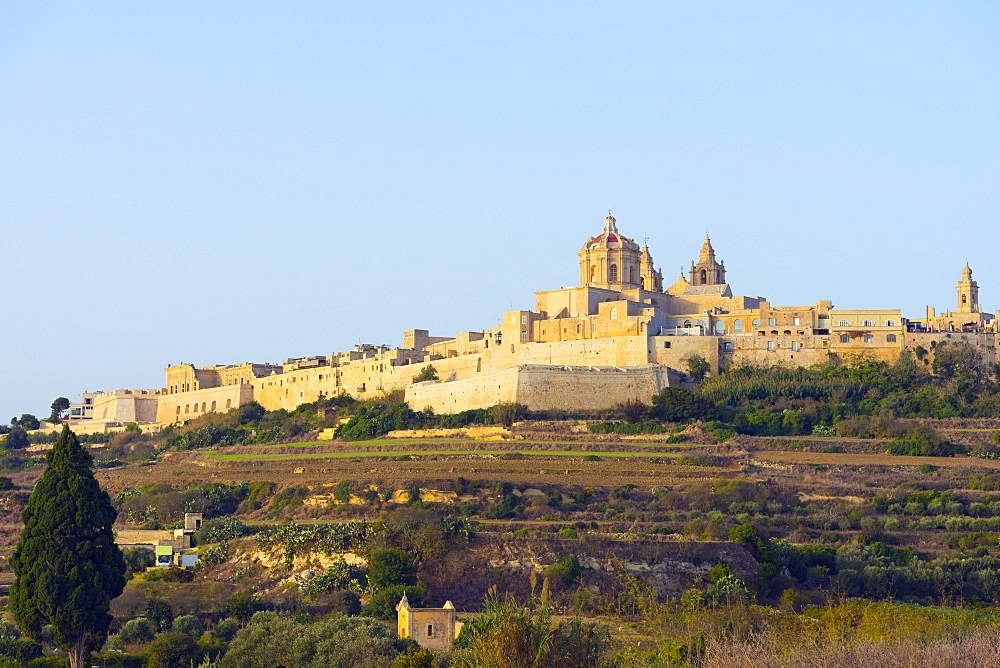 Stone walled city and St. Paul's Cathedral, Mdina, Malta, Mediterranean, Europe