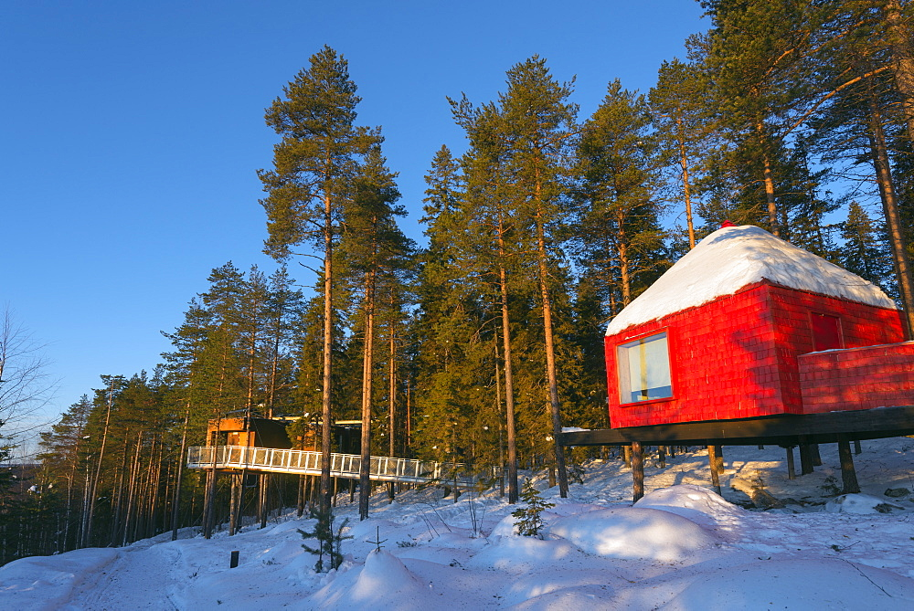 The Blue Cone room, The Tree Hotel, Lapland, Arctic Circle, Sweden, Scandinavia, Europe