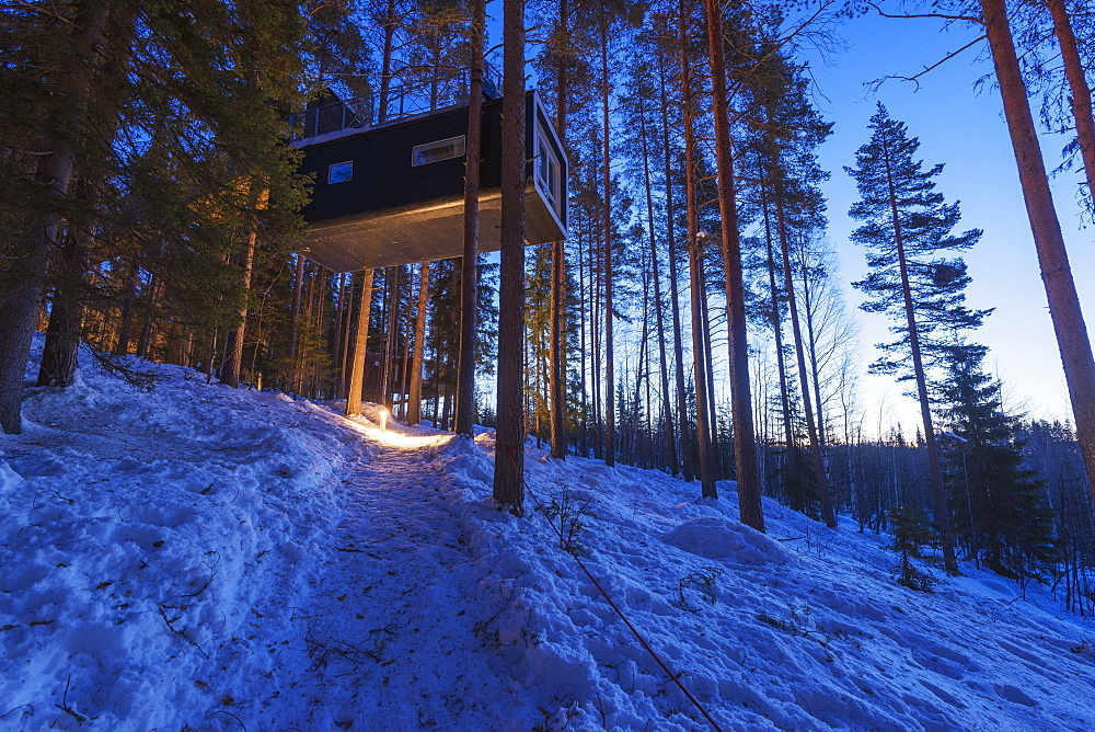The Cabin room, The Tree Hotel, Lapland, Arctic Circle, Sweden, Scandinavia, Europe