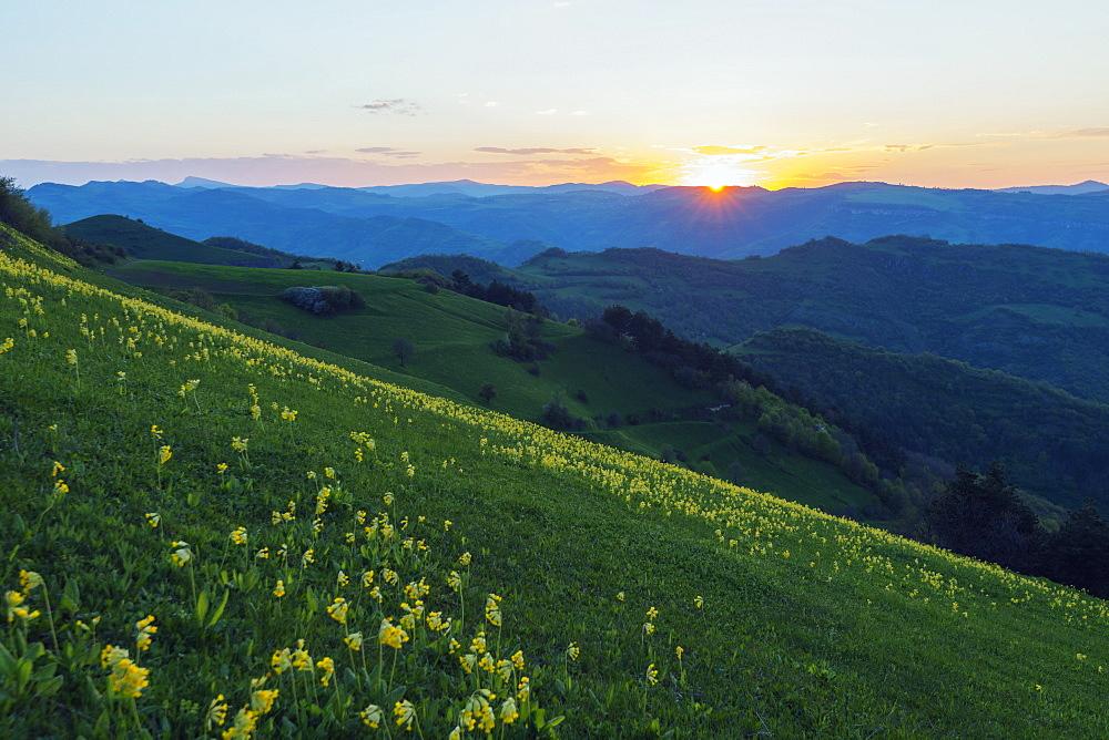 Rural scenery, Tavush province, Armenia, Caucasus, Central Asia, Asia