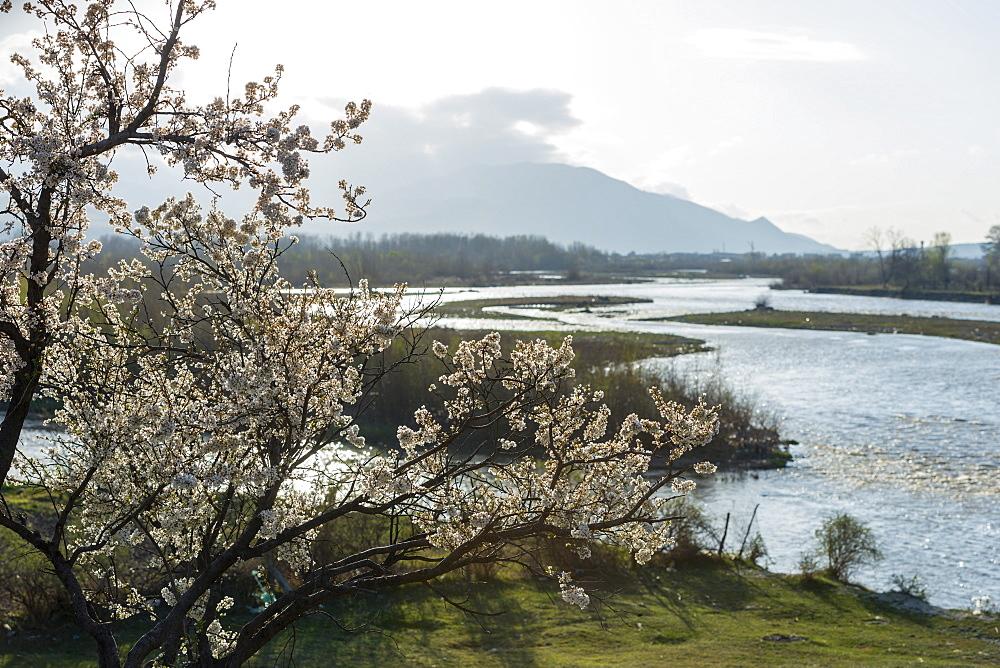 Spring landscape, Shida Kartli, Gori, Georgia, Caucasus, Central Asia, Asia