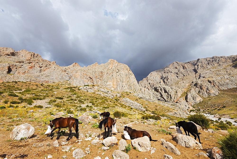 Ala Daglar National Park, Cappadocia, Anatolia, Turkey, Asia Minor, Eurasia