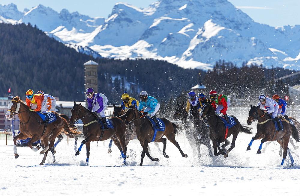 White Turf International Horse Race, winter, St. Moritz, Engadine, Graubunden, Switzerland, Europe
