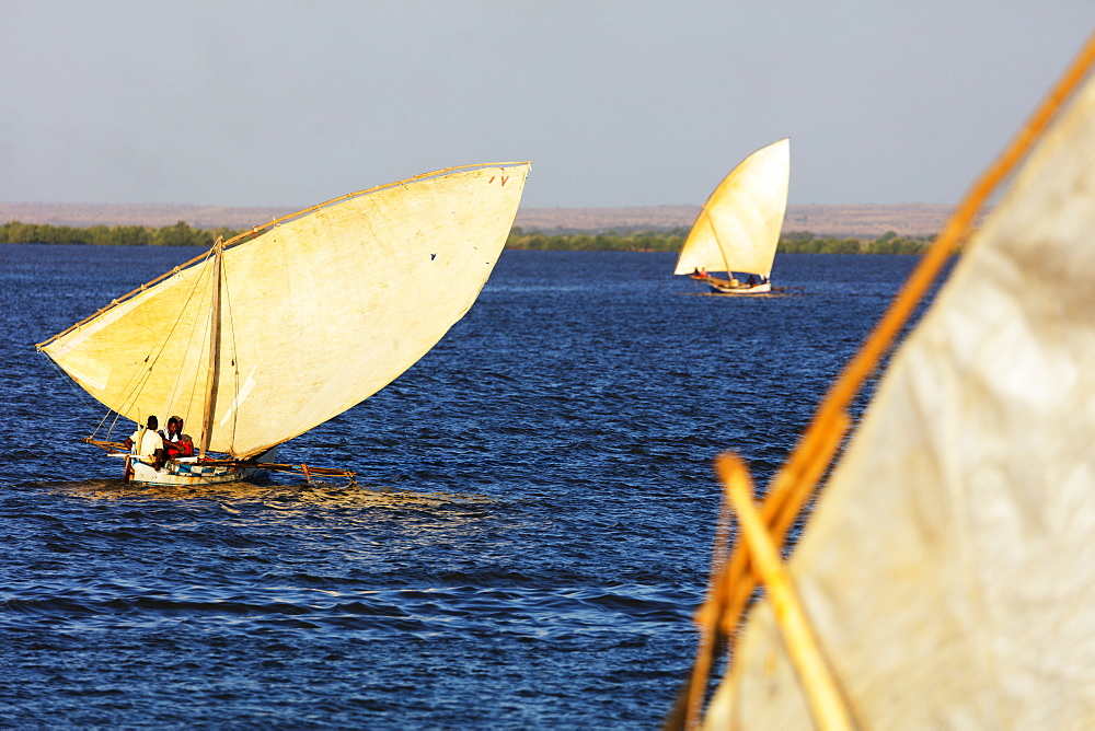 Traditional sail boats, Majunga (Mahajanga), western area, Madagascar, Africa