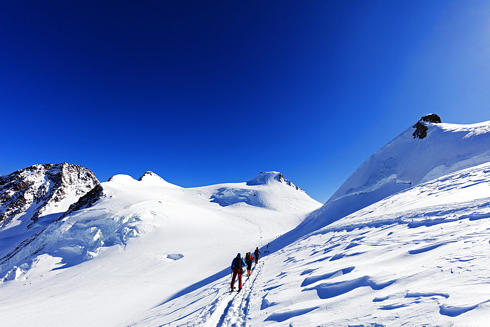 Europe, The Alps, Italy and Switzerland border, ski tourers on Monte Rosa
