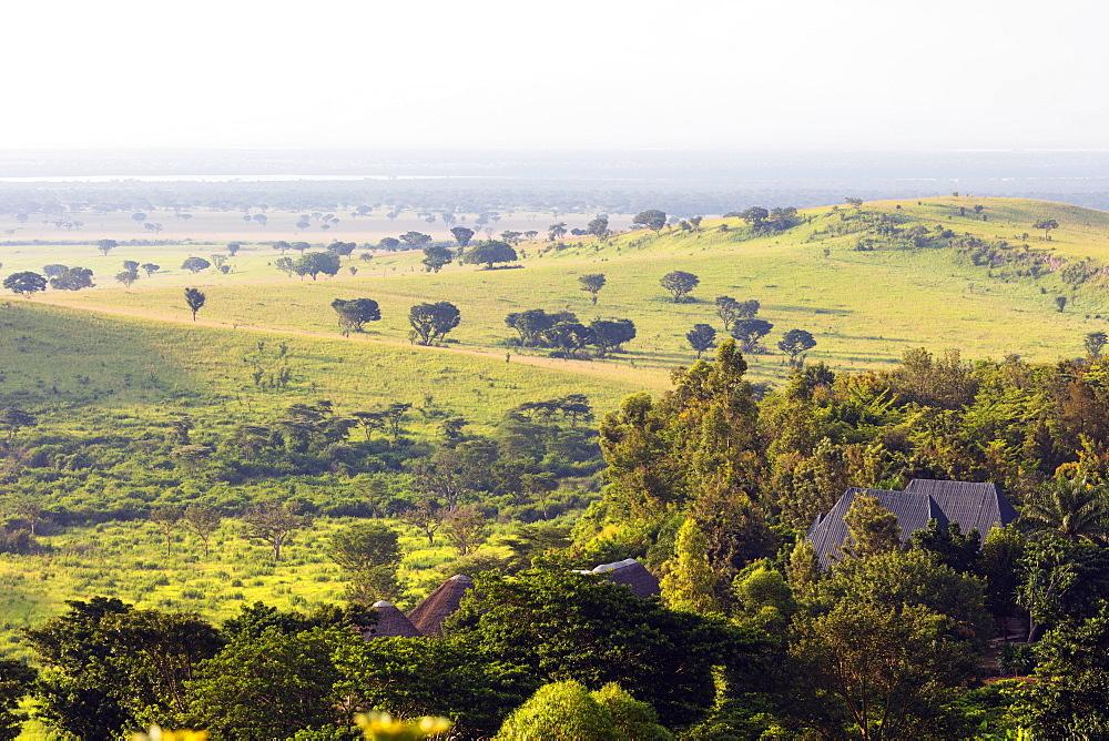 Africa, Uganda, Queen Elizabeth National Park
