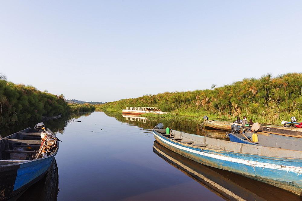 Mabamba swamp, Uganda, Africa