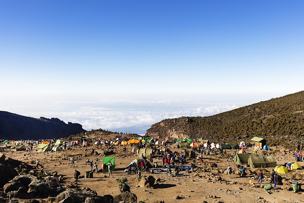 Barranco Camp, Kilimanjaro National Park, UNESCO World Heritage Site, Tanzania, East Africa, Africa