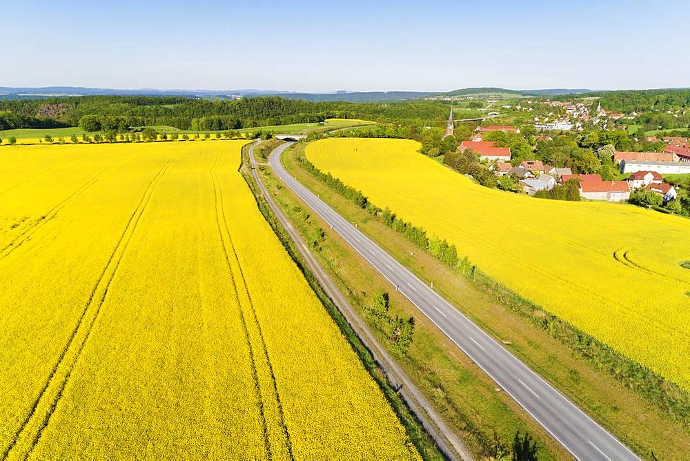 Aerial view of rape seed fields, Saxony, Germany, Europe