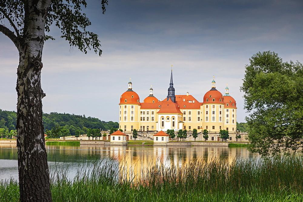 Moritzburg Castle, Saxony, Germany, Europe - 733-8014