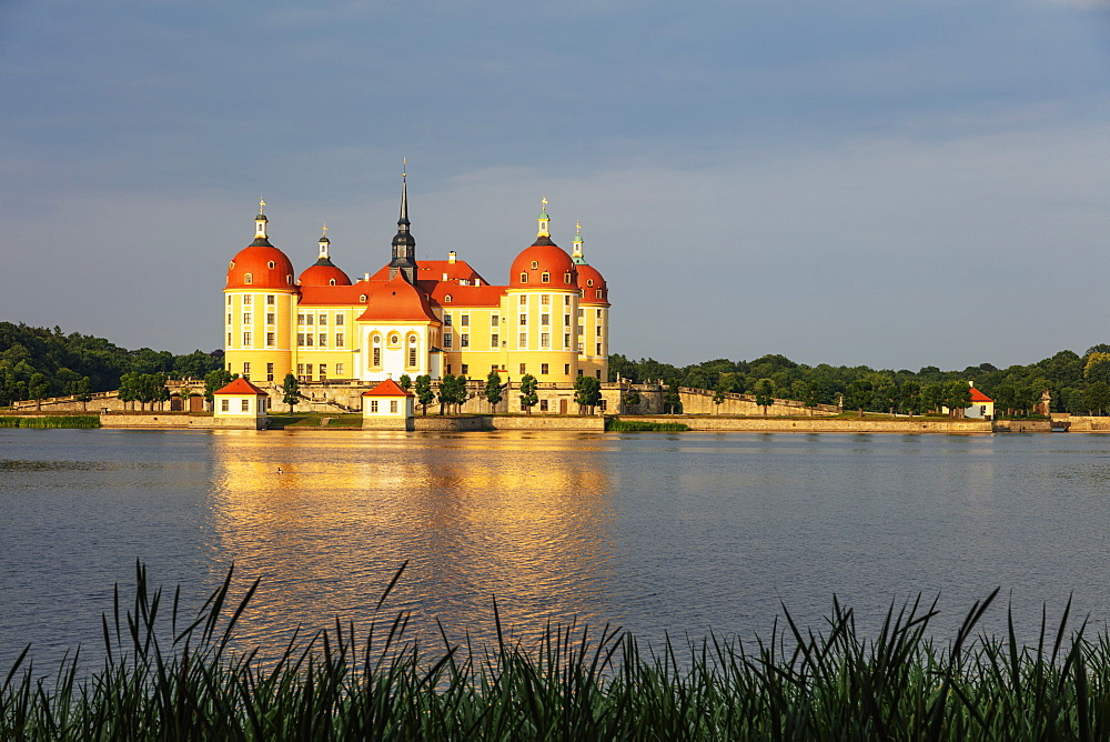 Moritzburg Castle, Saxony, Germany, Europe - 733-8019