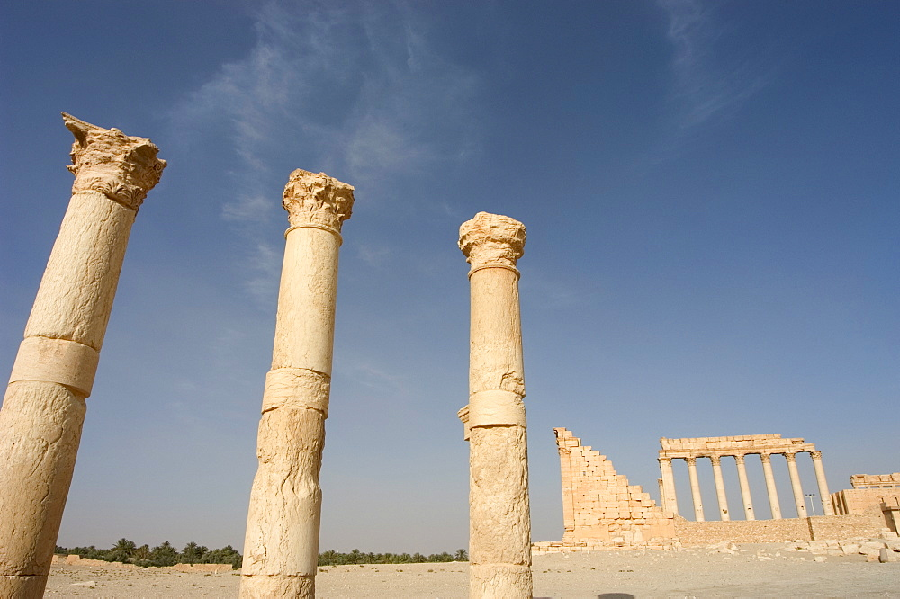 Colonnades, archaelogical ruins, Palmyra, UNESCO World Heritage Site, Syria, Middle East