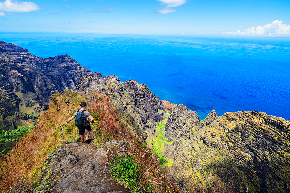 Hiker, Napali coast, Kokee State Park, Kauai Island, Hawaii, United States of America, North America
