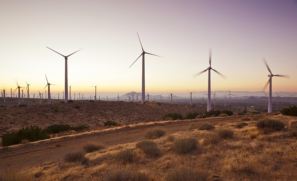 Wind turbines just outside Mojave, California, United States of America, North America - 734-148