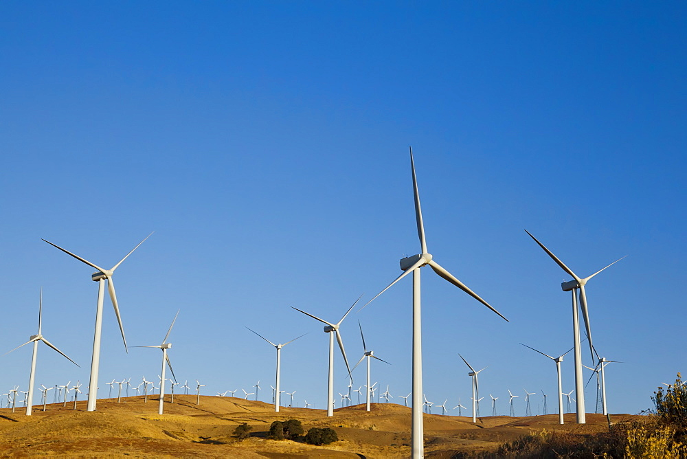 Wind turbines just outside Mojave, California, United States of America, North America - 734-149