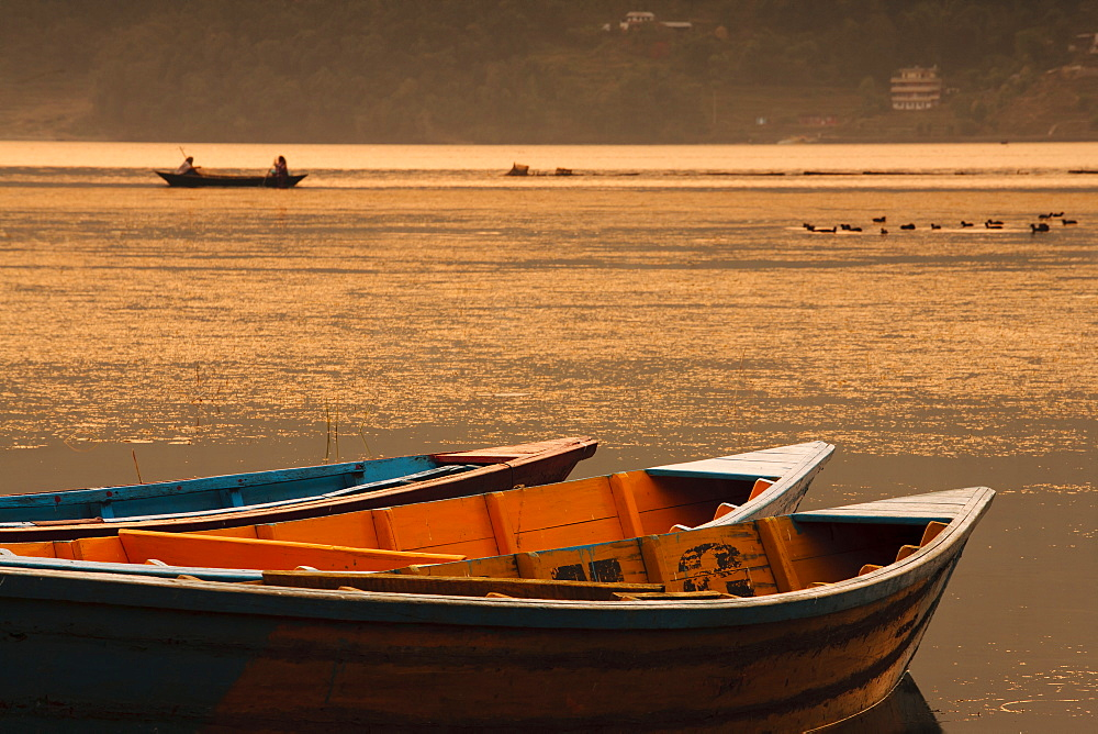 Local fishing boats on Phewa Lake at sunset, Gandak, Nepal, Asia - 734-172