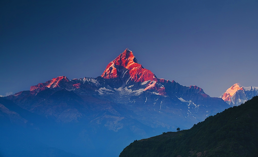 Machapuchare (Machhapuchhre) (Fish Tail) mountain, in the Annapurna Himal of north central Nepal, Nepal, Himalayas, Asia - 734-177