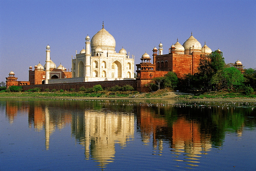 Taj Mahal, Agra, India - 735-415