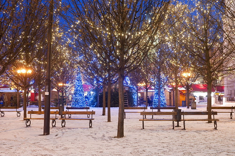 Christmas decoration at Old Town Square's park at twilight, Stare Mesto, Prague, Czech Republic, Europe