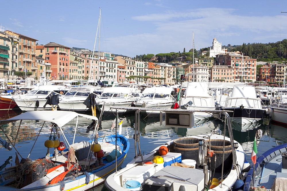 View of Santa Margherita, Liguria, Italy, Mediterranean, Europe - 739-1277
