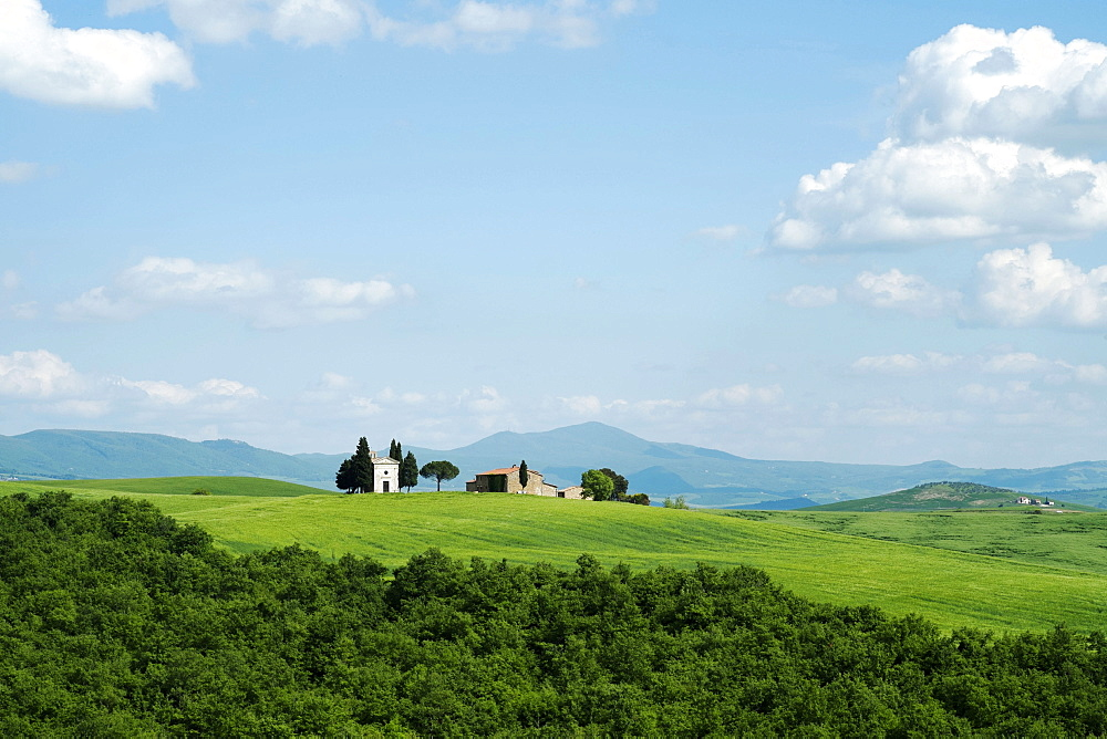 The Chapel of Our Lady of Vitaleta, Val D'Orcia, UNESCO World Heritage Site, Tuscany, Italy, Europe