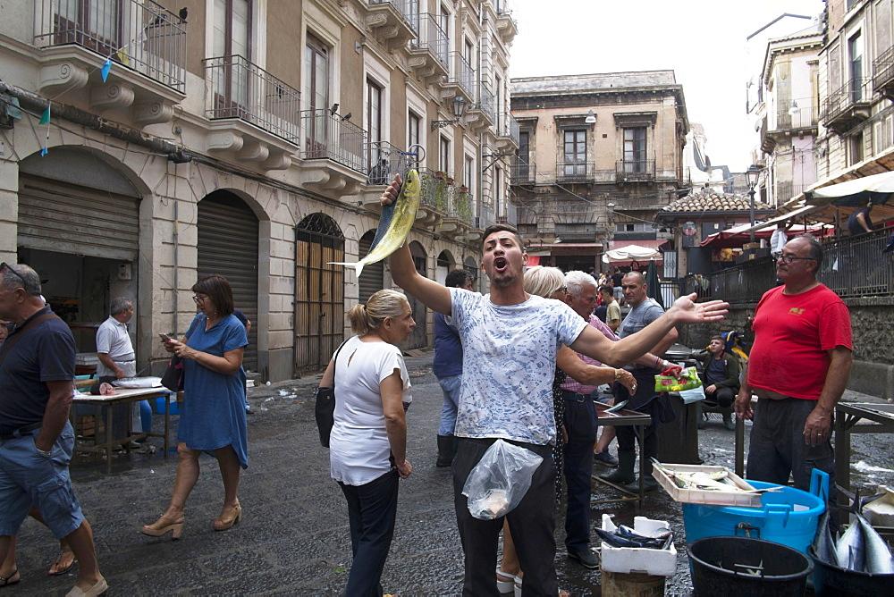 Catania fish market, Catania, Sicily, Italy, Europe - 739-1390