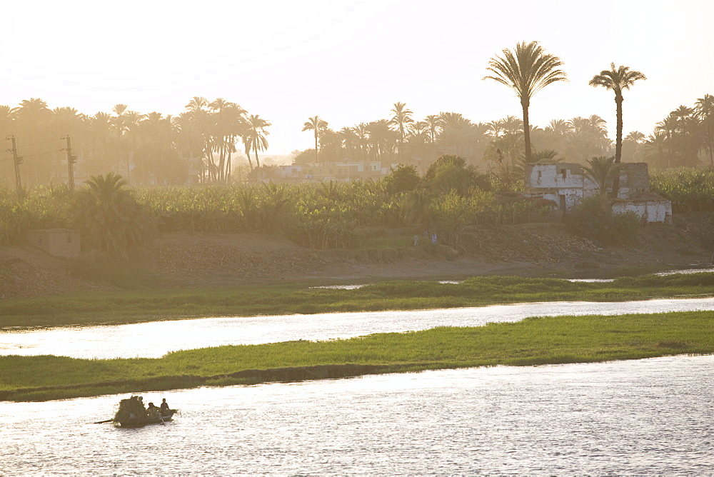 Life along the River Nile, near Aswan, Egypt, North Africa, Africa