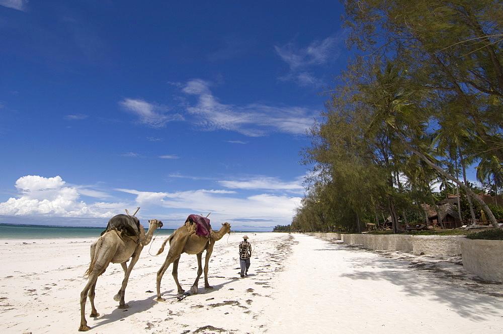 Diani Beach, near Mombasa, Kenya, East Africa, Africa