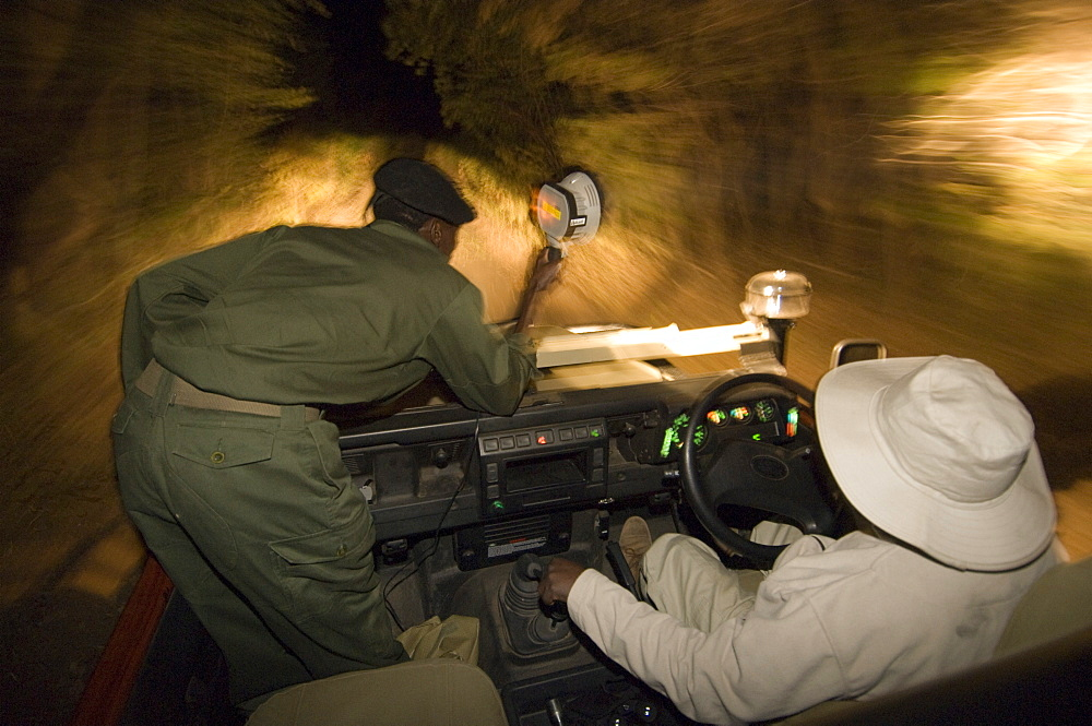 Night game drive in South Luangwa National Park, Zambia, Africa