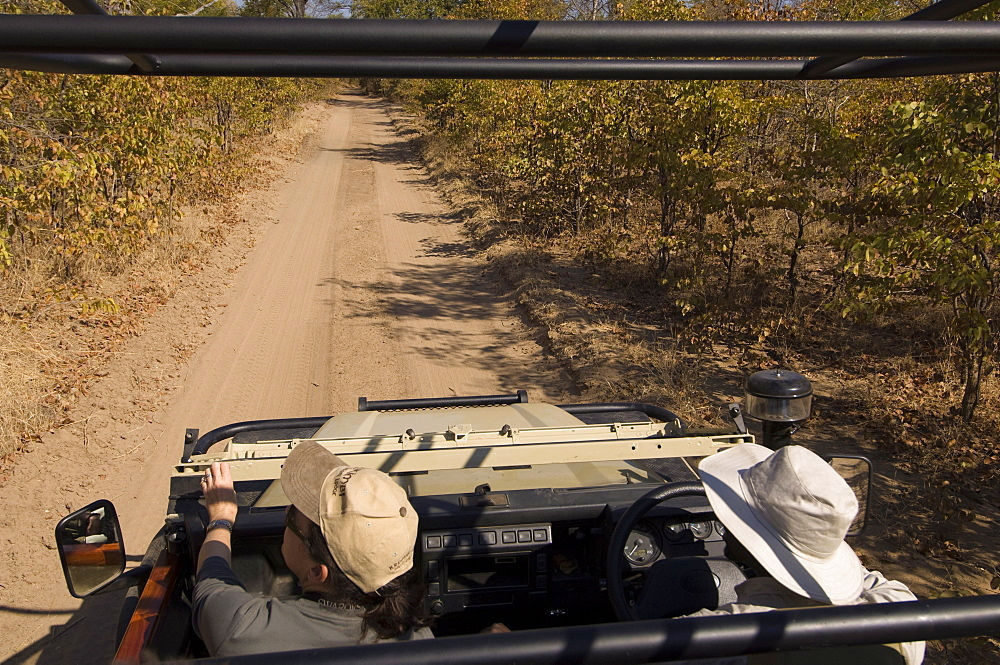 On safari, South Luangwa National Park, Zambia, Africa