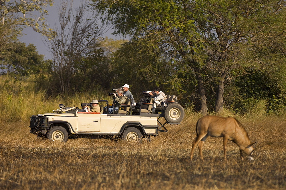 Roan antelope and safari vehicle, Busanga Plains, Kafue National Park, Zambia, Africa