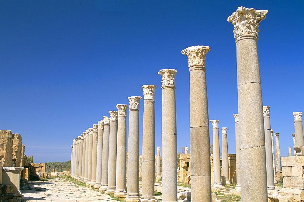Theatre, Leptis Magna, UNESCO World Heritage Site, Tripolitania, Libya, North Africa, Africa