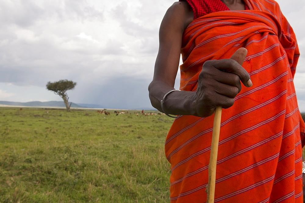 Masai man, Masai Mara, Kenya, East Africa, Africa - 741-3362