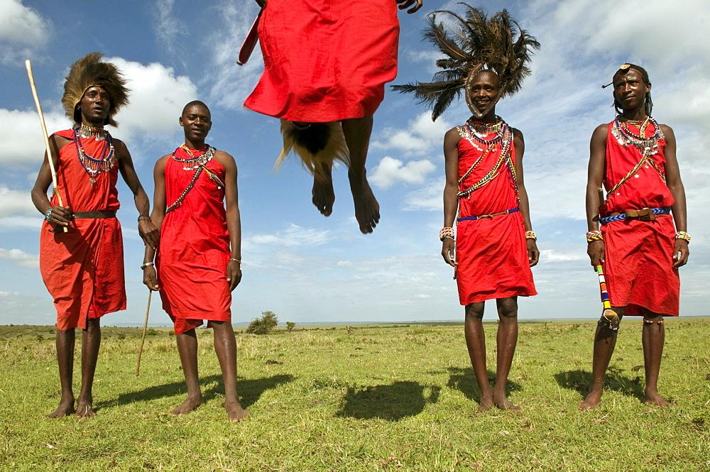 Masai performing warrior dance, Masai Mara, Kenya, East Africa, Africa - 741-3373