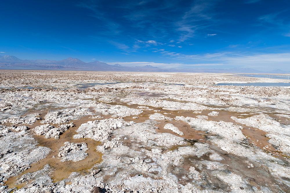 Salt crust, Salar de Atacama, Atacama Desert, Chile, South America