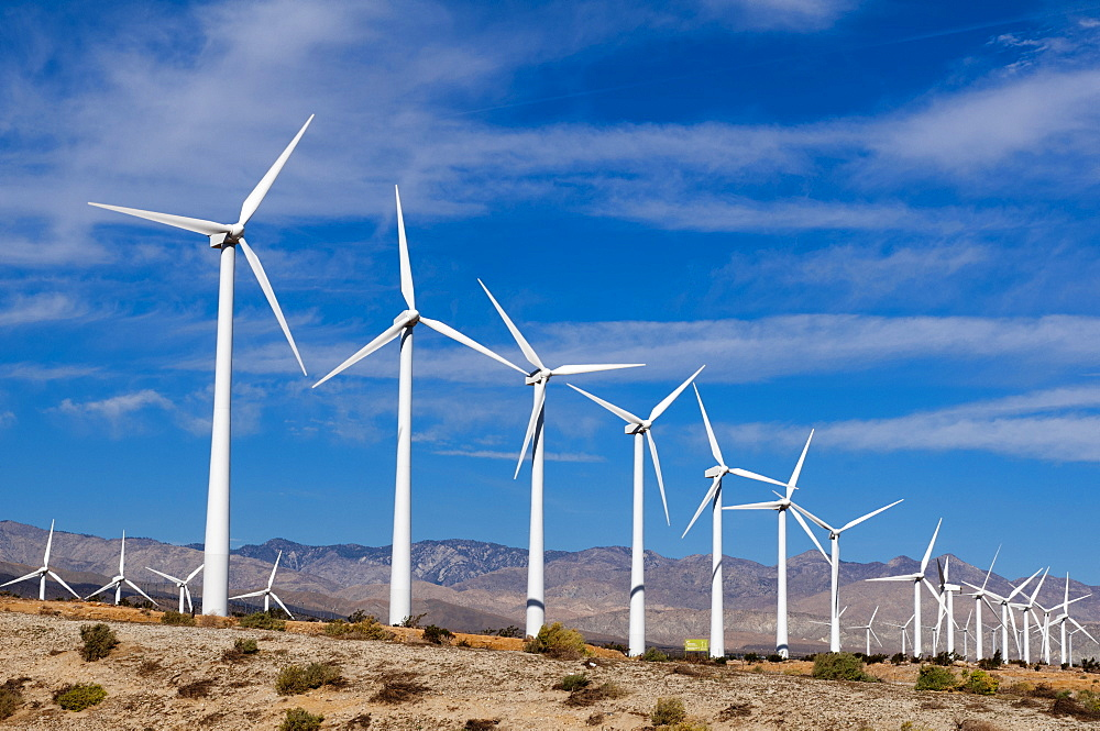 Wind Farm, Palm Springs, California, United States of America, North America - 741-4049
