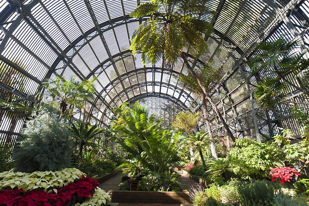 Botanical Building, Balboa Park, San Diego, California, United States of America, North America